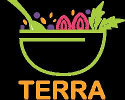 terrasf_logo